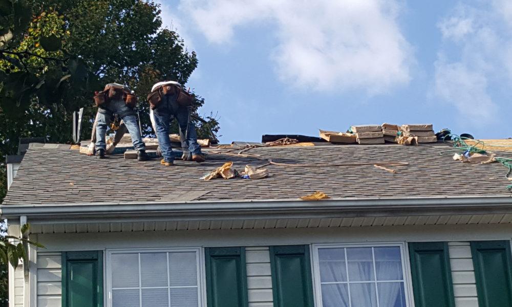 roof shingles repair